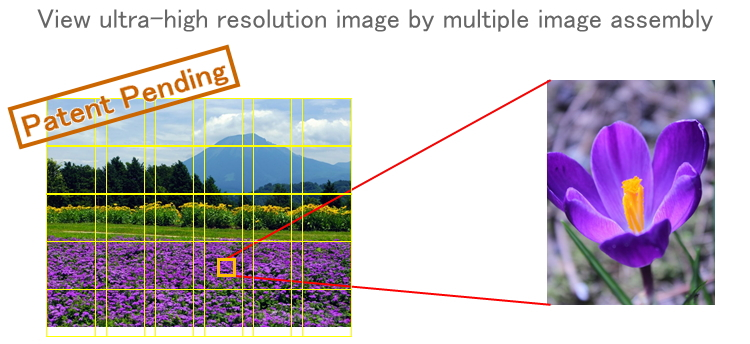 """Tera-Viewer"" Ultra-high speed tera-scale image viewer"